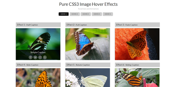 css3-hover-effects