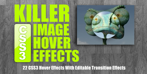 image-hover-effects-10
