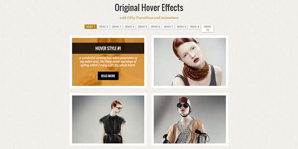 original-image-hover-effects