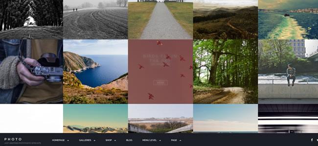 phototastic-wordpress-photography-theme
