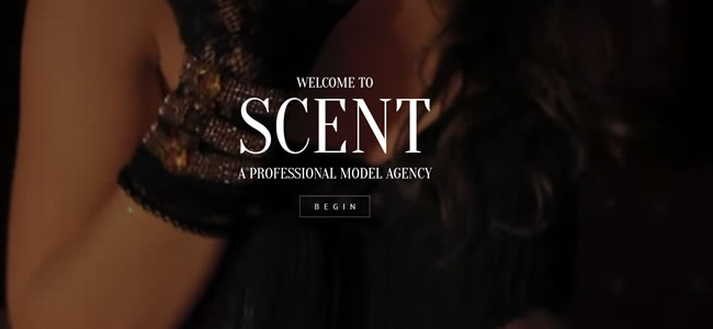 scent-wordpress-photography-theme