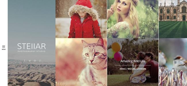 stellar-wordpress-photography-theme