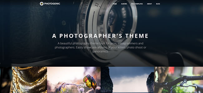 photogenic-wordpress-photography-theme