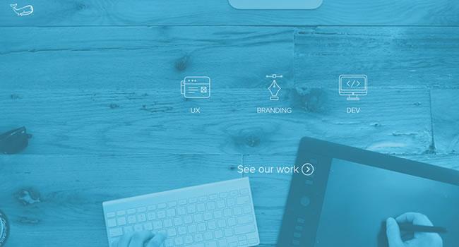 underbelly-website-design