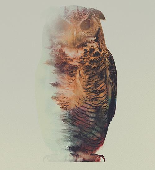 double-exposure-owl